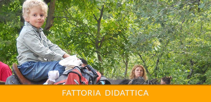 fattoria-didattica-laportadeiparchi